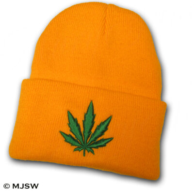 Beanie-Orange_grn-leaf